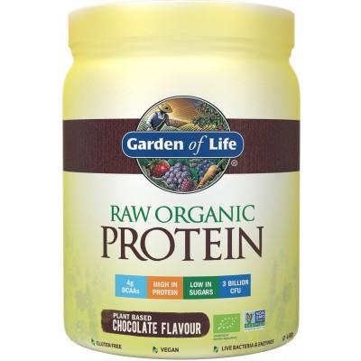Raw Organic Protein Chocolate